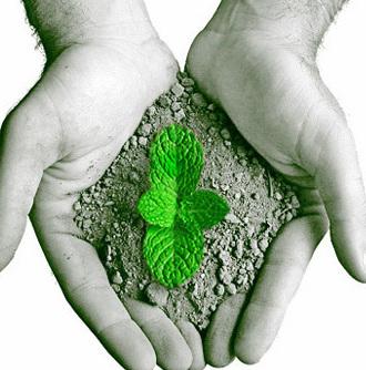 A saúde do planeta em nossas mãos